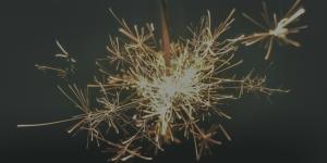 Sistemas de magia (II): Magia Elementarista